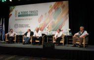 En mayo, la cadena del trigo se reúne en Mar del Plata para consolidar una nueva etapa