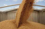 Control de matrículas en el sector cerealero