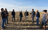 Buenos Aires: la superficie sembrada creció un 18,8%