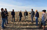Crece 8% la superficie sembrada de cebada
