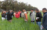 IV Semana de la Agroecología en la Chacra de Barrow