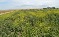 Paisajes Multifuncionales: agricultura que suma biodiversidad