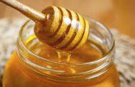 Se inicia la implementación del Sistema Informático de Trazabilidad Apícolapara salas de extracción de miel