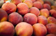 Crecieron las exportaciones de alimentos de economías regionales