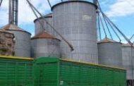 Se consolidan las exportaciones agroindustriales