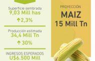 Prevén récord de cosecha gruesa con más de 9 M de has y se anticipan más de 15 millones de TN de Maíz
