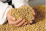 Ratificó su compromiso en defensa de los intereses de los pequeños y medianos productores