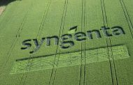 Syngenta y The Nature Conservancy se unen para crear innovación para la naturaleza