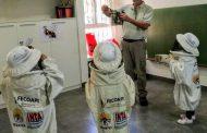 Se desarrolla la Semana de la Miel con charlas en colegios y degustaciones en toda la Provincia