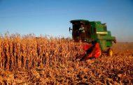 Continuaron creciendo las exportaciones agroindustriales  en el primer trimestre del año