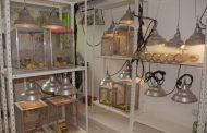 Importante inversión para el laboratorio de Sanidad Vegetal
