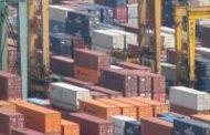 El volumen de las exportaciones creció 15% durante el primer semestre de 2019