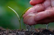 """Diálogo sobre el Futuro de la Agricultura"""