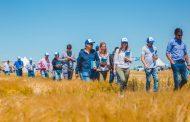Con una inversión de 6 millones de dólares, Cervecería y Maltería Quilmes desarrolló dos nuevas variedades de cebada