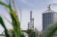 Bioenergía en Argentina