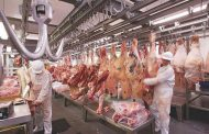 Exportaciones de carne en febrero