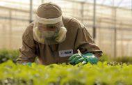 Innovación agrícola para llevar tecnologías cada vez más sustentables a los agricultores