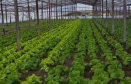 SELANZÓ PROGRAMA DE PROMOCIÓN DE LA AGROECOLOGÍA