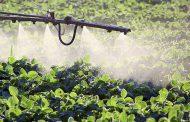 ¿Se puede considerar sano un cultivo que requiere la aplicación frecuente de agroquímicos?