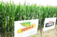 Con una amplia gama de productos y servicios para la siembra del cultivo