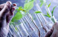 Un cuarto de siglo con la biotecnología