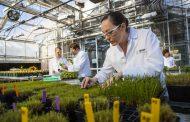 BASF presenta sus novedades de Soluciones para la Agricultura