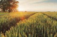 Financiamiento responsable para productores agropecuarios
