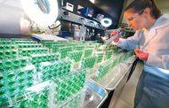 """En plena era digital, Bayer trabaja para que los productores tomen la decisión """"perfecta""""."""