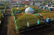 NK afianza su compromiso innovador presentando materiales de alto potencial