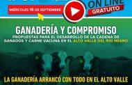 Seminario ganadero virtual del IPCVA en Río Negro