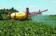 El manejo actual de la nutrición de la soja limita su producción