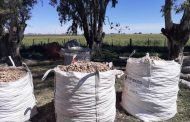 Se detectó a 8 trabajadores rurales en presunta situación de explotación laboral en el cultivo de papa en Gonzales Chaves