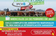 Se viene la primera jornada virtual del IPCVA en Reconquista