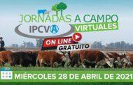 Cuenta regresiva para la nueva jornada del IPCVA