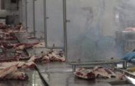 IPCVA: Efectos negativos del cierre  parcial a las exportaciones de carne