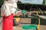 Máxima productividad: los motores de FPT Industrial mueven a los nuevos tractores de New Holland Agriculture