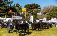 La Exposición Nacional de Primavera se realizará en octubre en Tandil