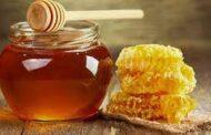 Miel bonaerense: Destacan el potencial de la producción apícola en la provincia