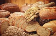 Biotecnología como clave para lograr el mejoramiento genético en el cultivo de trigo